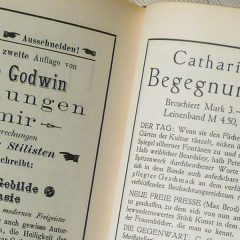 Begegnungen mit Mir: Kritiker über Catherina Godwin